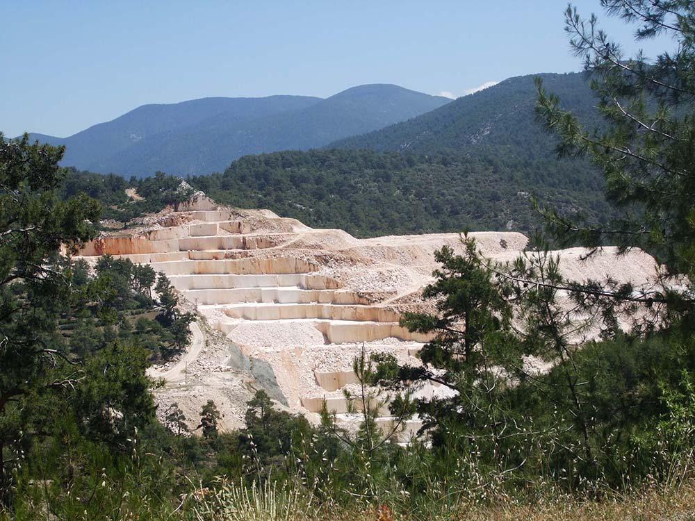 Bir hafta önce zeytinliklere göz diken maden patronları şimdi de 'Ormanların Tapusunu' istedi!