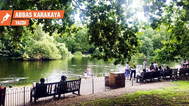 Gezi'den İngiltere'ye: Yağmalanan parklar, gözbebeği parklar