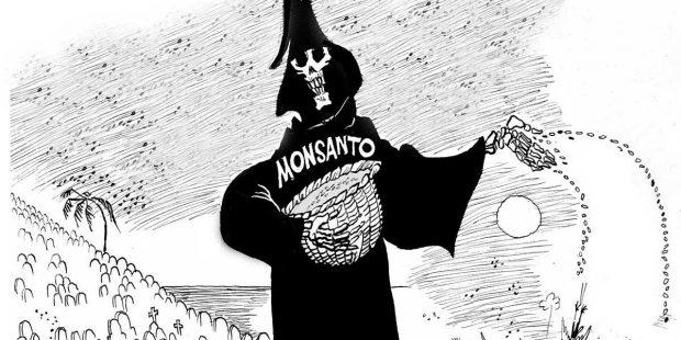 GDO'lu tarım ilacından dolayı sağlığı bozulan çiftçi konuştu: Bunlar ilaç değil, zehirdir!