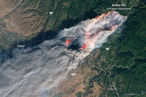 California orman yangını 34 bin futbol sahası büyüklüğü alanda sürüyor
