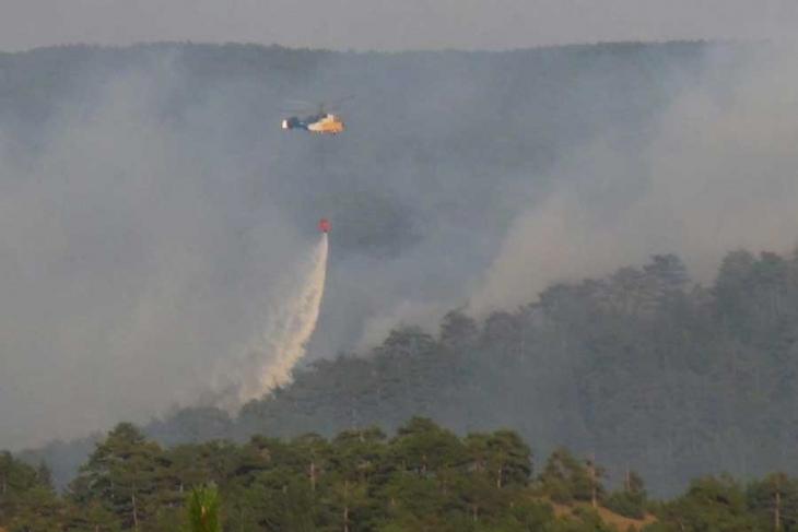 Son dört yılda 29 bin 642 hektar orman kül oldu!