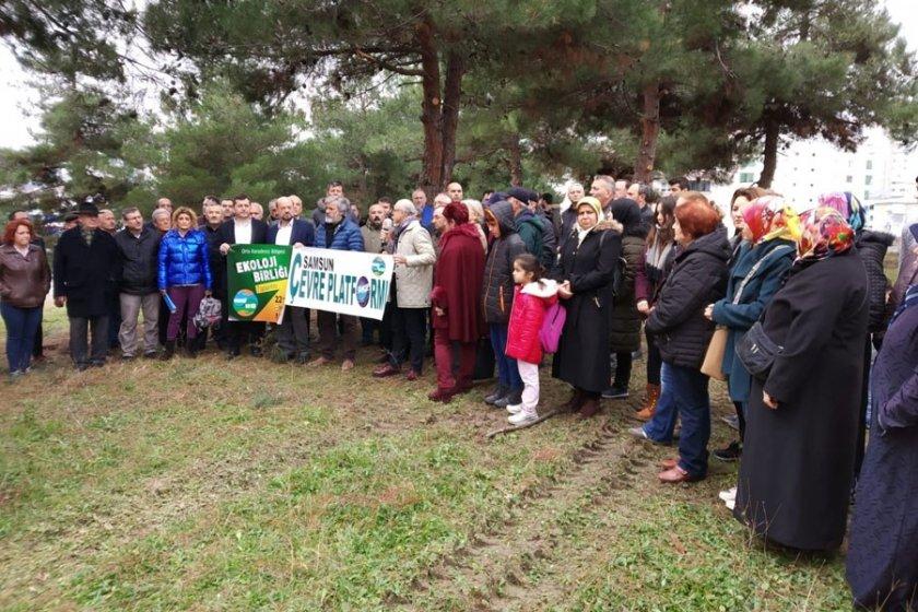 Samsun Büyükşehir Belediyesine 'ağaçlarımıza dokunma' çağrısı