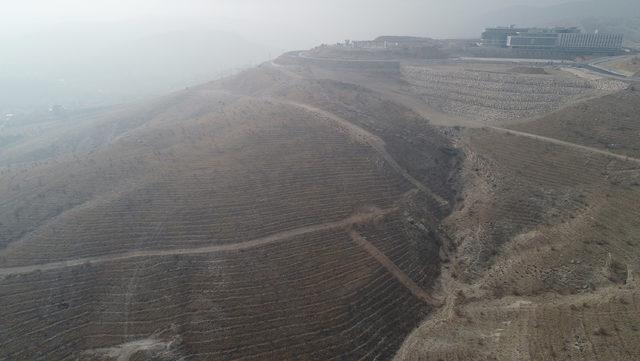 Konya'da bir vatandaş 160 bin metrekare ağaçlık araziyi rantın elinden kurtardı!