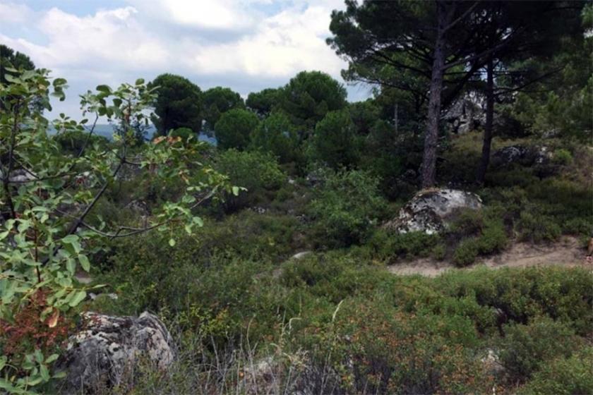 Bergama'da aynı köyün etrafına dördüncü taş ocağı izni verildi