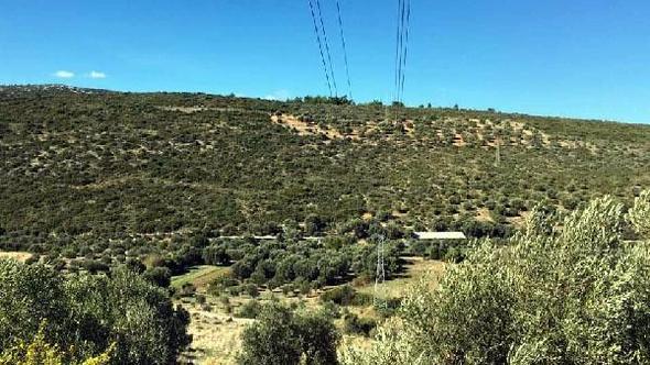 Urla'da 1'inci derecedoğal sit alanı zeytinlik bölgeye açılmak istenen taş ocağına ÇED izni çıkmadı
