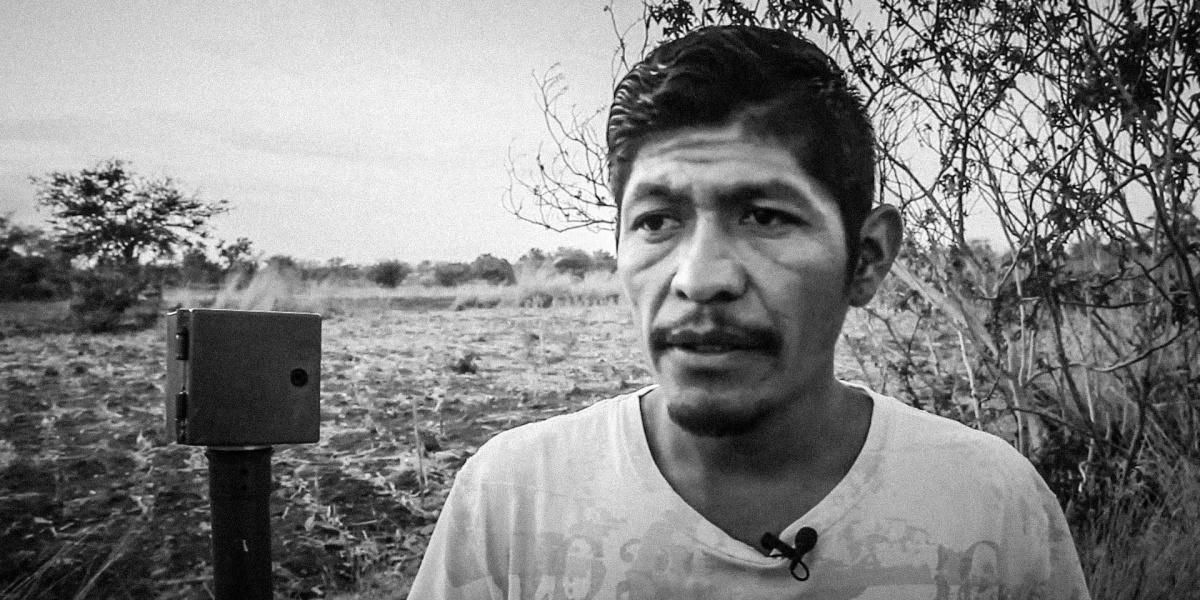 Meksika'da bir yaşam savunucusu daha doğa düşmanlarınca katledildi