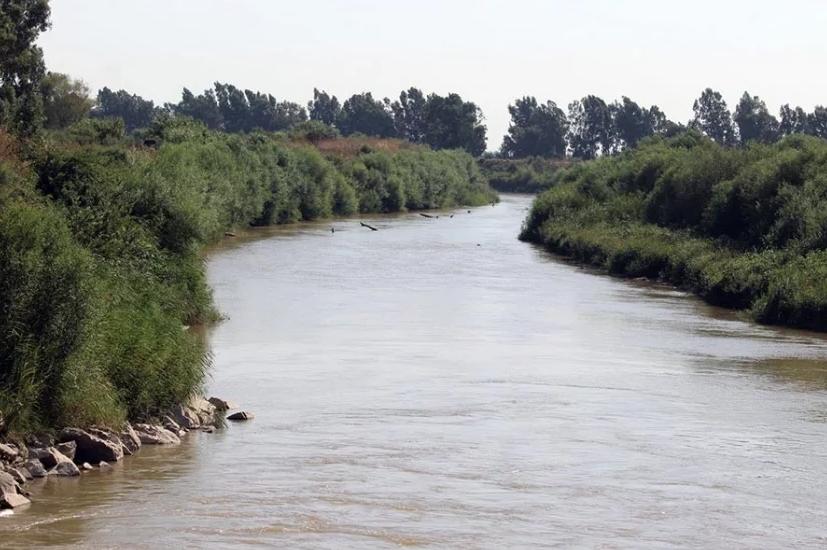 Büyük Menderes Nehri ölüm değil, yine yaşam saçmalı