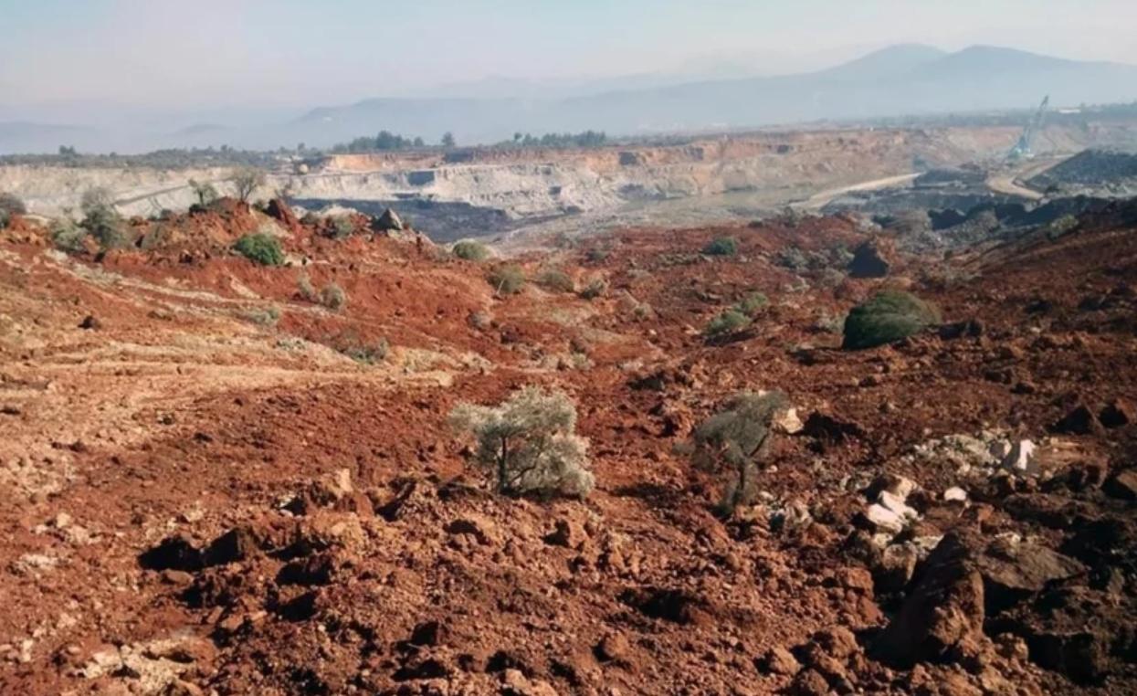 Muğla Yatağan'da kömür ocağına komşu yüzlerce zeytin ağacı heyelanla yok oldu