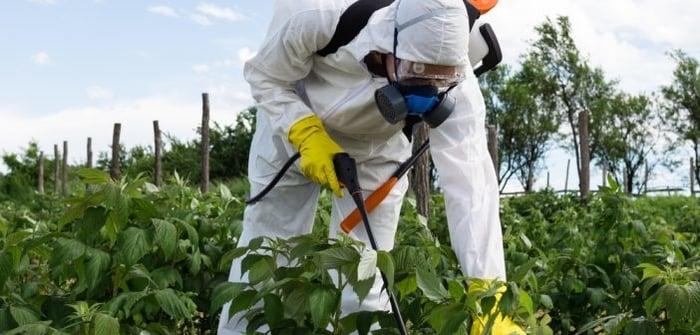 Tarıma Monsanto ayarı