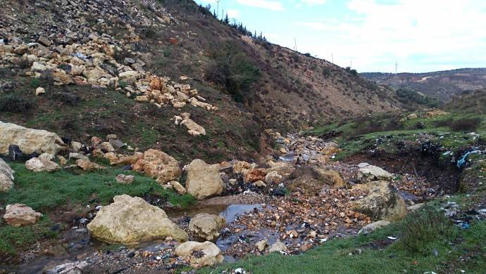 Doğa yağması ülkenin dört bir yanında: Asi Havzası'na Biyokütle enerji santrali
