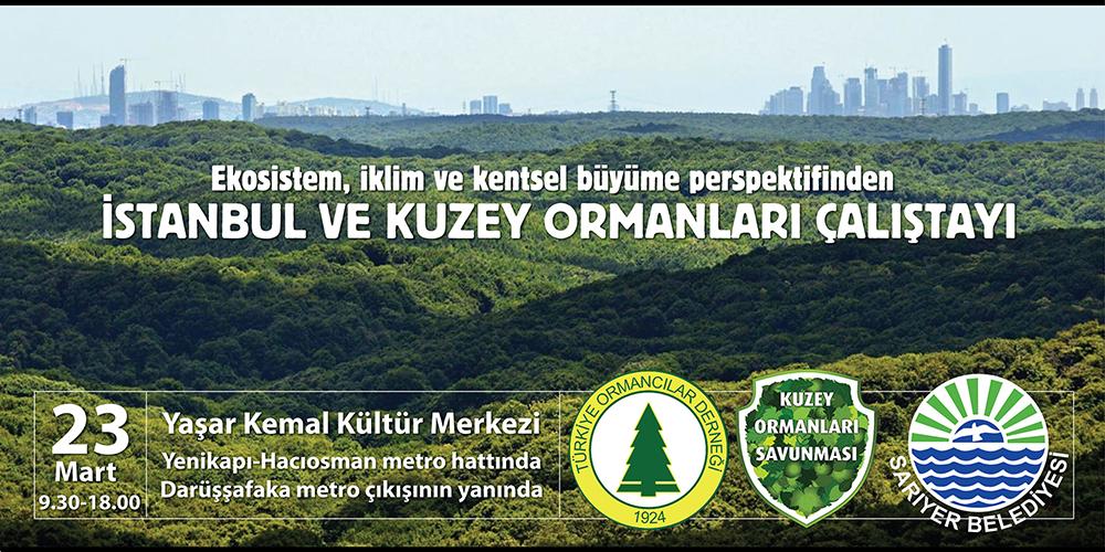 İstanbul ve Kuzey Ormanları Çalıştayı 23 Mart'ta