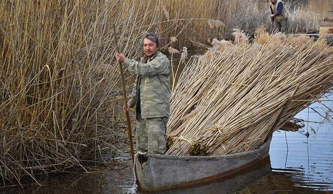 Eber Gölü kirliliğe terk edildi: Sazlıklar boynu bükük çıkıyor