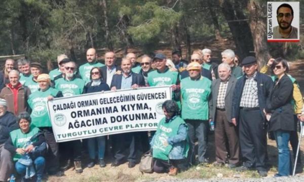 Çaldağı'nda 140 bin ağaç kesilmiş