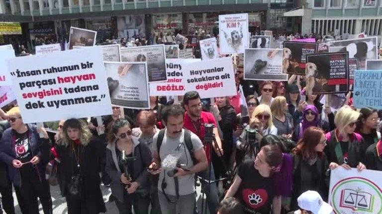 Hayvan hakları savunucuları Ankara'da buluştu