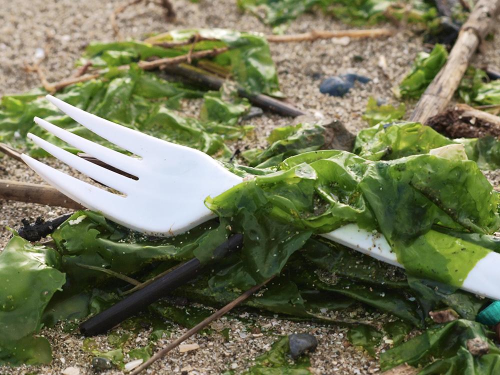 AB tek kullanımlık plastik ürün yasağını onayladı