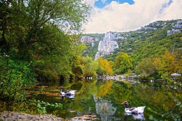Kuzey Marmara Otoyolu için orman katliamı: Ballıkayalar'da 17 bin ağaç daha kesilecek