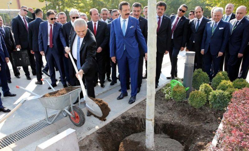 Yıldırım, 'İnanmayan saysın' demişti… Birileri saydı işte! AKP'nin diktik dediği 4,5 milyar  ağacın sırrı