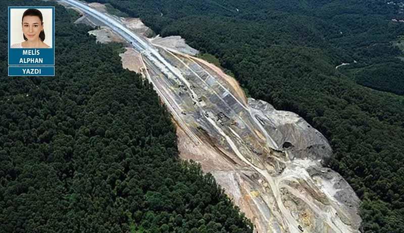 Yağma projeleriyle talan edilen Kuzey Ormanları can çekişiyor