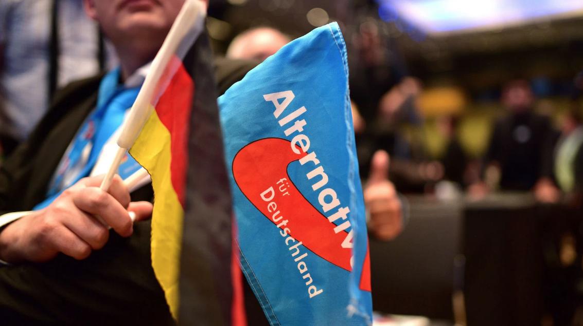"""Alman faşist parti AfD: """"Baş düşmanımız Yeşiller"""""""