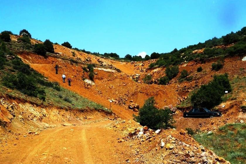 Eskişehir'de bozkırın ortasında maden uğruna 187 bin ağaç katledilecek!