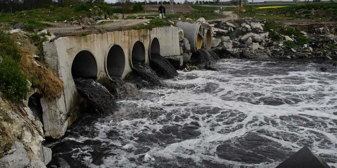 Arda Nehri'nde yüzülüyor, 1 kilometre uzağındaki Ergene'de bakteri bile yetişmiyor..