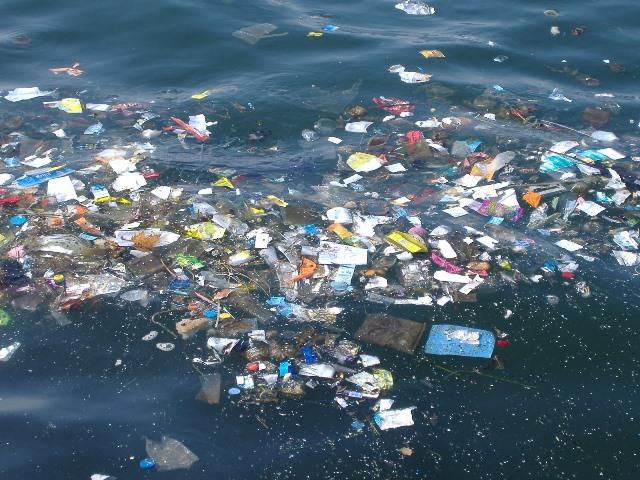Marmara Denizi'nde kirlilik alarm veriyor!