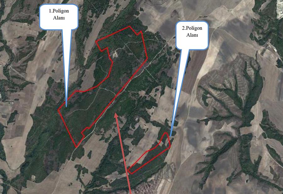 Mahkeme Çorlu'da Kuzey Ormanları'nı savundu