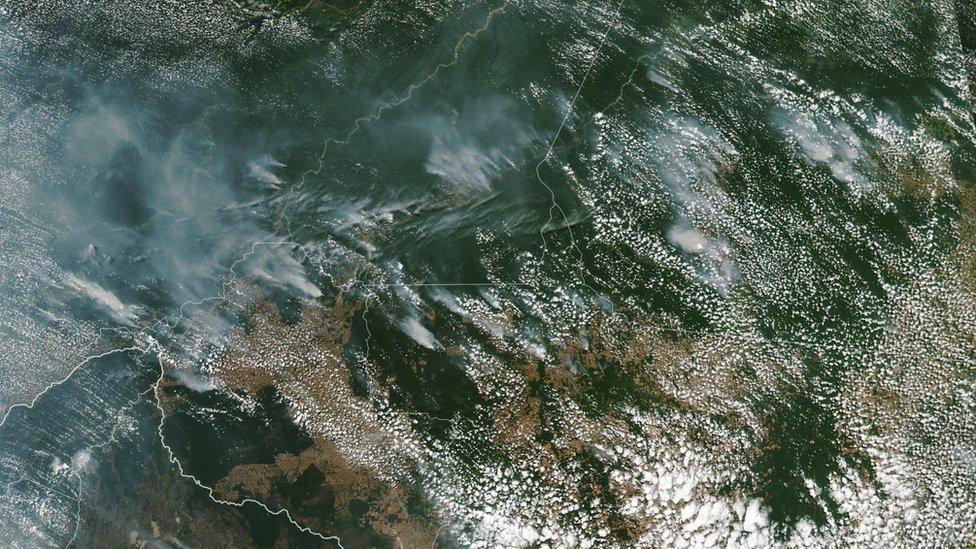 Amazon ormanlarındaki yangınlar Güney Amerika'yı nasıl karanlığa gömdü?