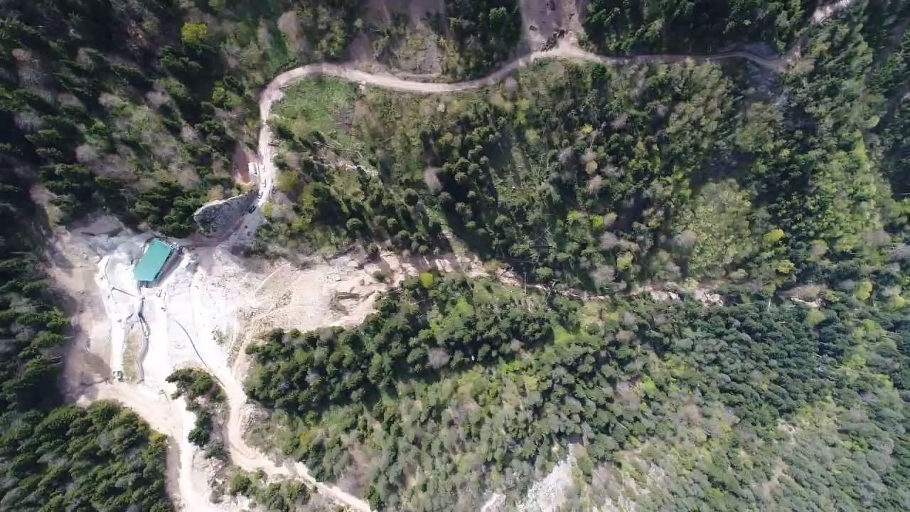 Türkiye ormanları maden kuşatması altında
