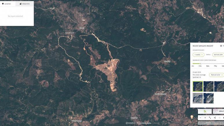 Türkiye'de orman alanı kaybı 2018'de zirveye çıktı