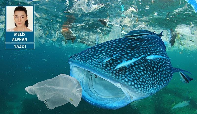 Tek kullanımlık plastikler Türkiye'de de yasaklanmalı!