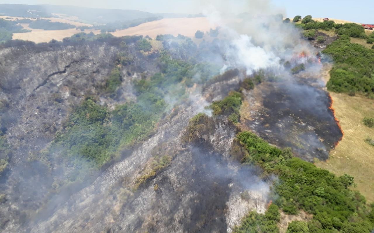 """Kuzey Ormanları Savunması: Acilen """"orman yangını alarmı"""" ilan edilsin!"""
