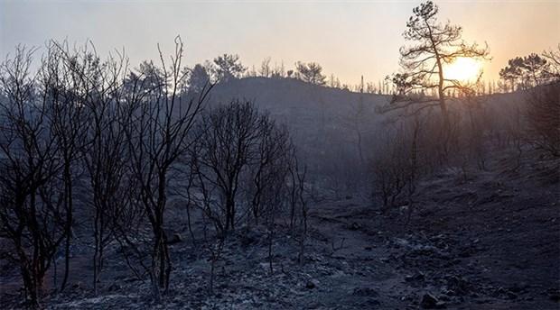 CHP İzmir milletvekillerinden orman yangınlarıyla ilgili meclis araştırması talebi