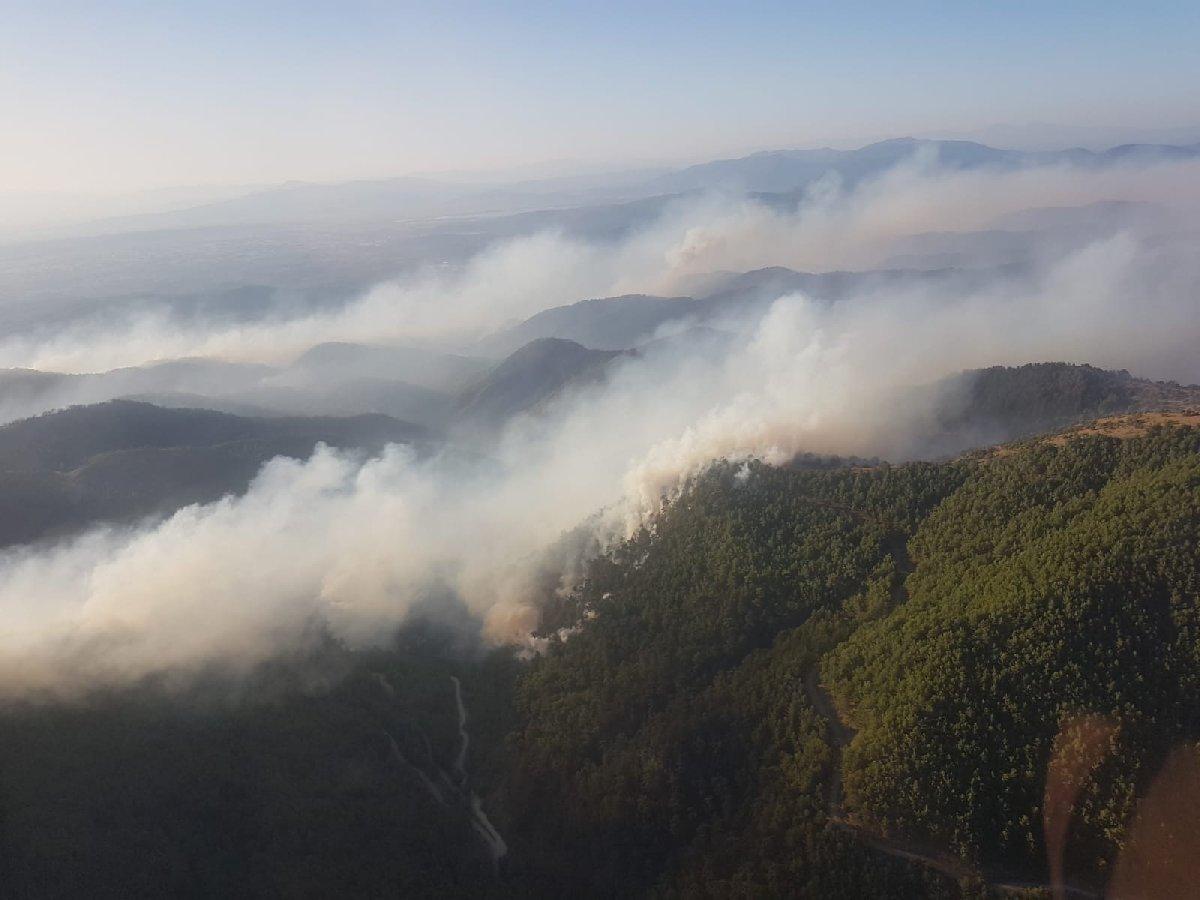 TMMOB İzmir: Yangınlarda 6 Bin 500 Hektarlık Orman Alanı Zarar Gördü