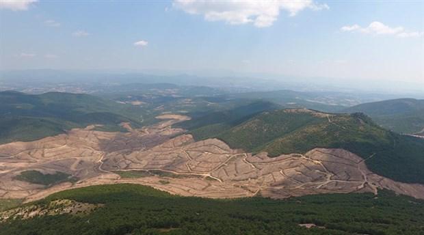 Ormanları talan etmek için kanunlar yok sayılıyor