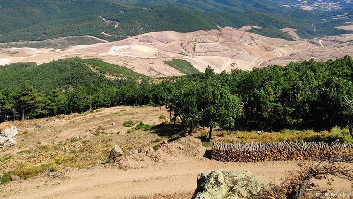 Bakanlığın açıkladığı sayıyı 24 ile çarpın; Kaz Dağları'nda kesilen 374 bin 815 ağaç!