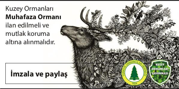 Kuzey Ormanları muhafaza ormanı ilan edilsin. İmzala, paylaş.