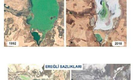 Türkiye göllerinin yüzde 60'ını kuruttuk