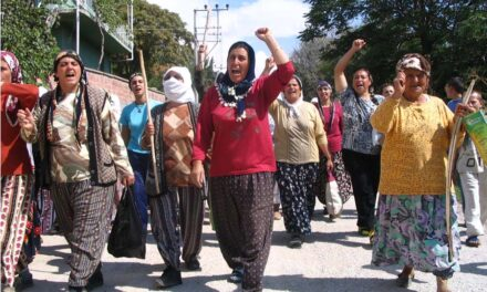 'Kadınlar ekoloji mücadelesinin bel kemiği'
