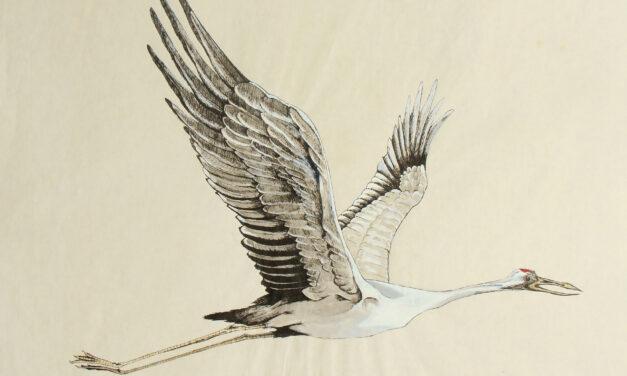 Göçmen Kuşlar; İnsanın yenilgisi, yeryüzünün zaferi
