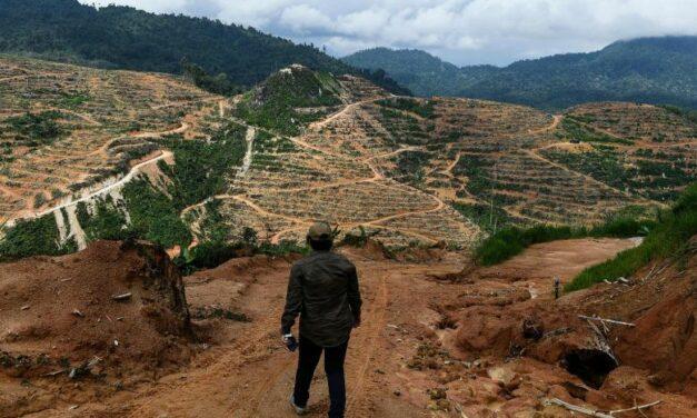 Salgın Hastalıklar, Ekosistem Tahribatları ve İklim Değişikliği ile İlişkili mi?