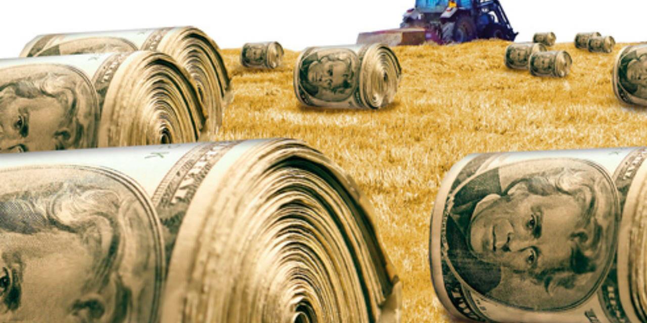 Kapitalist tarım bir halk sağlığı sorunudur