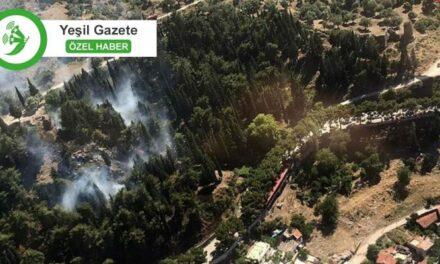 Orman yangınları alarm veriyor