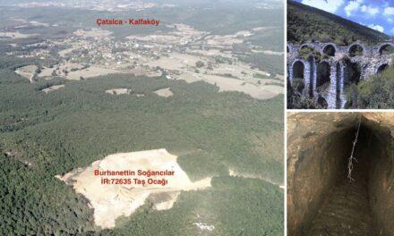 Kuzey Ormanları'nın Ortasındaki Eşsiz Tarihi Mirası Yok Etmeye Devam Ediyorlar!