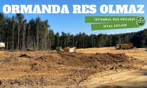 ORMANDA RES OLMAZ: İSTANBUL RES PROJESİ İPTAL EDİLSİN!