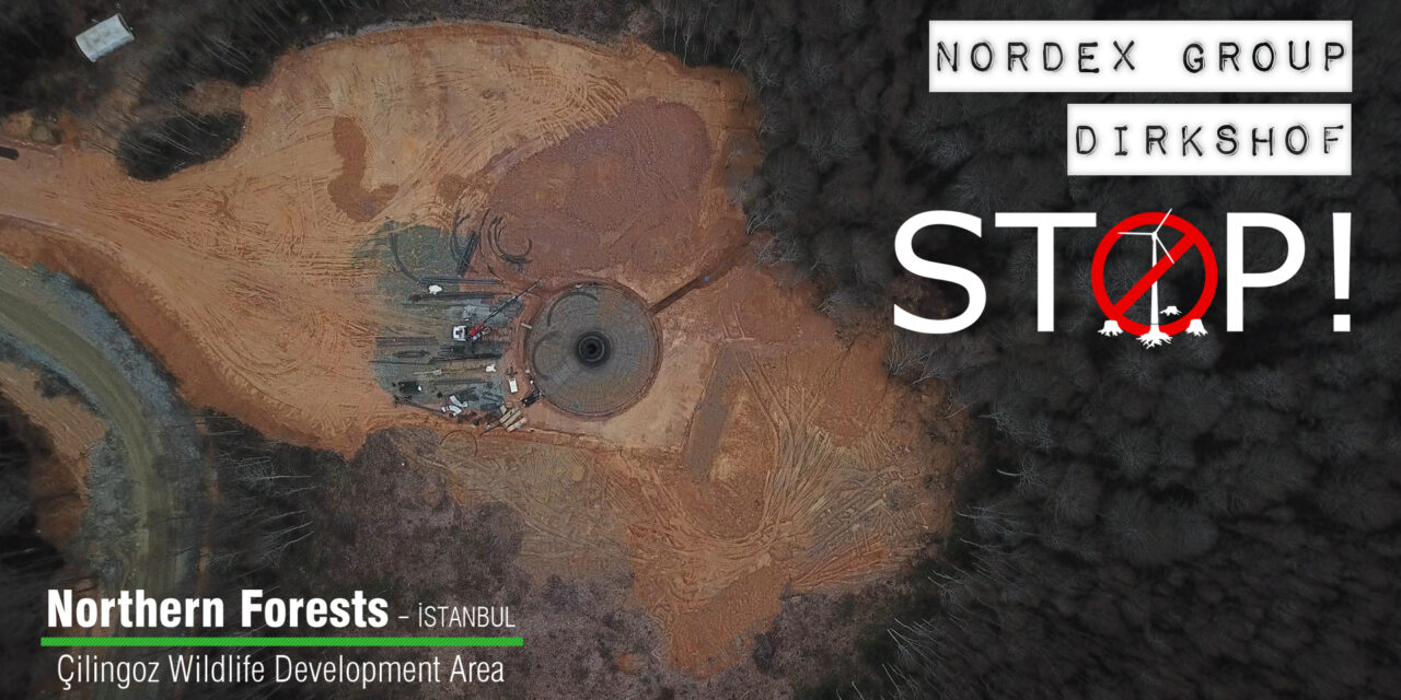 "DIRKSHOF – NORDEX GROUP COLLABORATION; ""İSTANBUL WIND POWER PROJECT"" DESTROYS THE WILDLIFE IN THE NORTHERN FORESTS (İSTANBUL – ÇİLİNGOZ WILDLIFE DEVELOPMENT AREA)"
