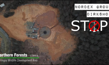"""DIRKHSHOF – NORDEX GROUP COLLABORATION; """"İSTANBUL WIND POWER PROJECT"""" DESTROYS THE WILDLIFE IN THE NORTHERN FORESTS (İSTANBUL – ÇİLİNGOZ WILDLIFE DEVELOPMENT AREA)"""