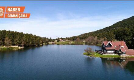 Türkiye Ormancılar Derneği: Milli parklar ucuz hammadde sağlamak için gözden çıkarıldı